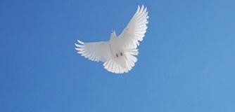 Сила Духа Богатыря
