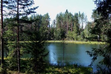 рыбалка Волга